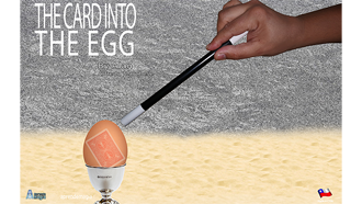 cardintoegg.png